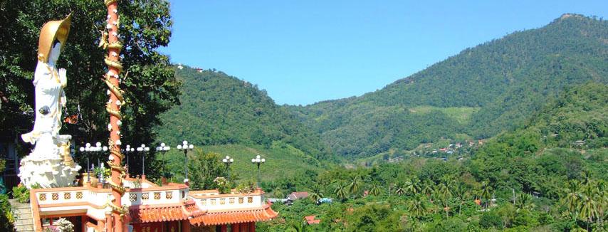 Grüne Berge und Täler